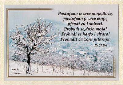 Foto čestitka - 14