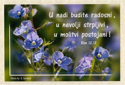Foto čestitka - 21